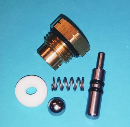 Rv2p repair kit